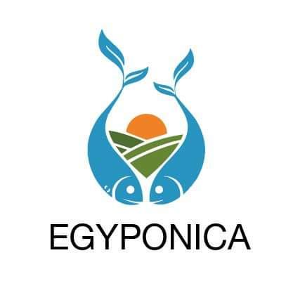 EgyPonica